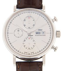 IWC Portofino Stainless Steel Silver Automatic Iw391027 (IW391007)