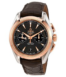 Omega Seamaster Aqua Terra Teak Grey Dial GMT Steel and 18K Rose Gold Automatic Men's Watch 23123435206001